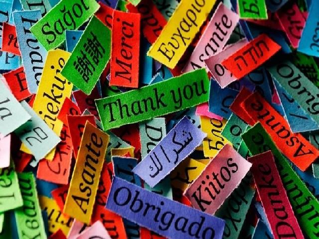 Conhecimento de línguas estrangeiras em detalhes